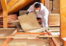 Pest control insulation attic Virginia Beach