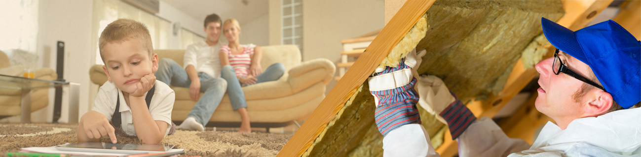 Insulation Services virginia beach chesapeake