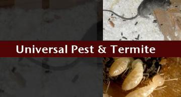 Universal Pest & Termite Virginia Beach