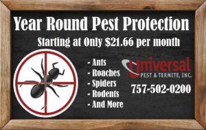 Ant Pest Control Service Home Pest Control