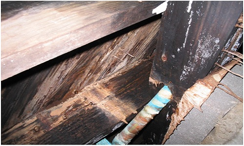 Wood-Rot in Crawl Space